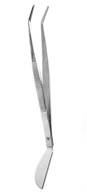 Forceps (curved)